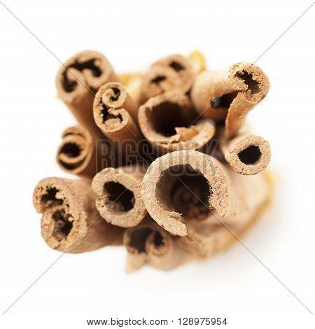 Top view of Raw Organic Cinnamon sticks (Cinnamomum verum) isolated on white background.