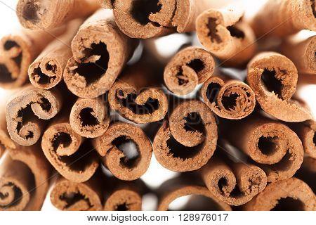 Cross section view of Raw Organic Cinnamon sticks (Cinnamomum verum) isolated on white background.