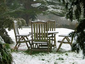 Quiet Retreat In The Snow