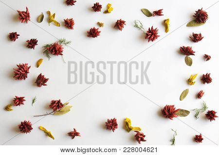 Frame Of Dried Red Flowers, On White Background, Top View