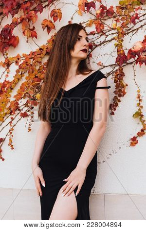 Luxurious Attractive Long-haired Girl In A Black Dress Posing Near An Unusual Wall, In Her Garden