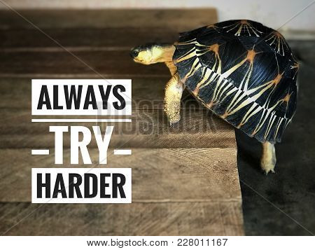 Motivational And Inspirational Quotes - Always Try Harder. With Blurred Styled Background.