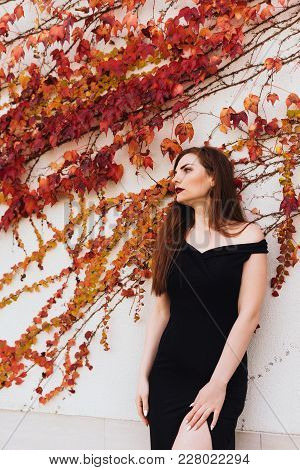 Attractive Rich Young Woman In Black Dress Posing Against Wall, Enjoying Luxurious Rest