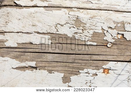 Vintage Wood Background Texture With Knots And Nail, Close-up
