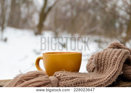 Cup Of Coffee And Cozy Knitted Scarf On The Background Of The Winter Forest
