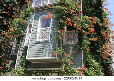 Historic Istanbul House. Image Of Historic House In The Sultanahmet District Of The Istanbul Turkey.