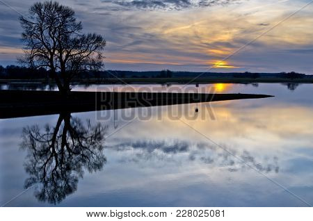 Beautiful Sunset On The River Elba, Germany With Silhouette Of Tree