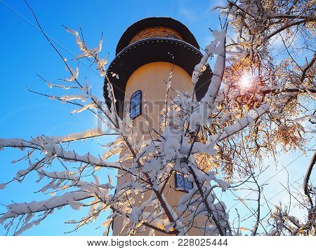A Clock Tower On A Background Of Trees In The Snow. A Sunny Frosty Day