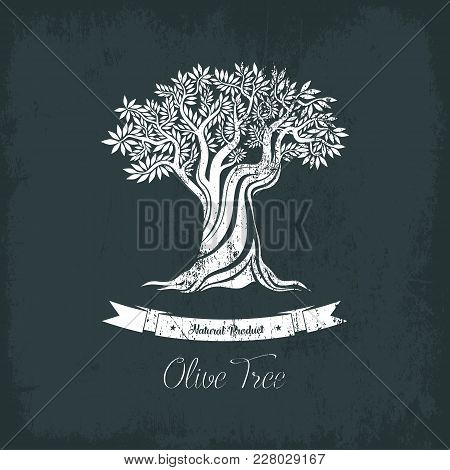 Greece Olive Tree Logo With Branches, Vegetarian Food. Olive Grove Banner Or Badge, Oil Sticker For