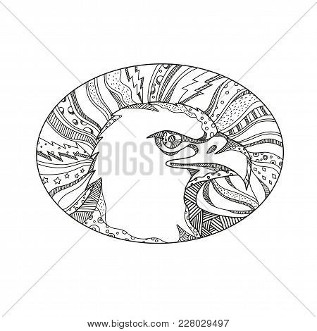 Doodle Art Illustration Of Head Of Bald Eagle Or Sea Eagle, Bird Of Prey Found In North America Side