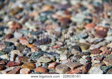 Multi-colored Pebble With The Foreground In Focus