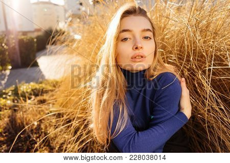 Attractive Young Blond Model Girl In Blue Sweater Sits On The Background Of A Yellow Plant Posing In