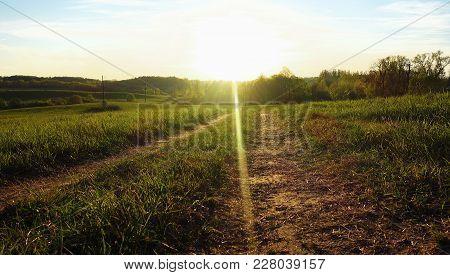 Country Road In Sunlight, Landscape, Grass, Farm,