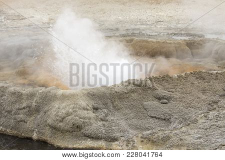 Steaming Geyser Vents At Fountain Paint Pots In Yellowstone National Park