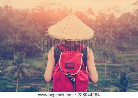 Young Lady With Traditional Asian Hat Standing With Backpack And Looking At Green Rice Field, Intent
