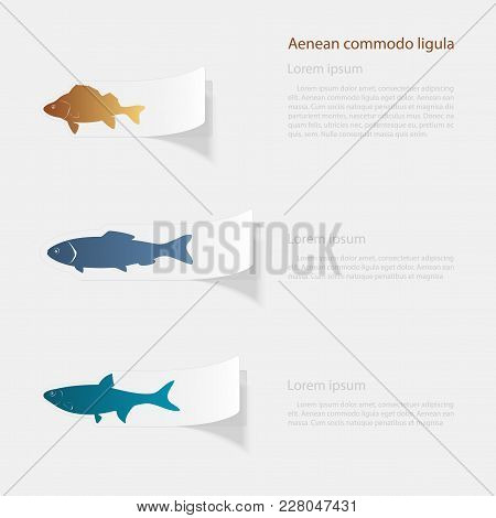 Freshwater Fish. Flat Sticker With Shadow On White Background. Vector Illustration