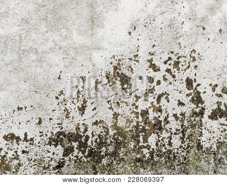 Detail of an old grungy wall texture