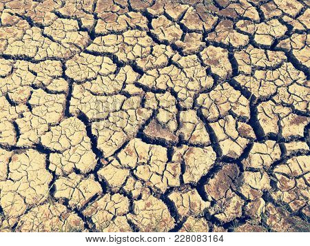 Cracked and barren soil