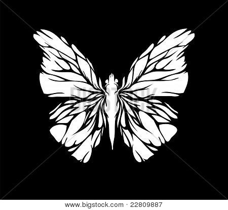 White butterfly on black bacground (vector)