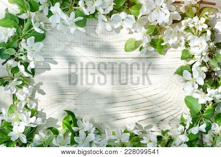 White Wooden Background. Flowers Of Apple On The Edge Of The Frame. Place For Text