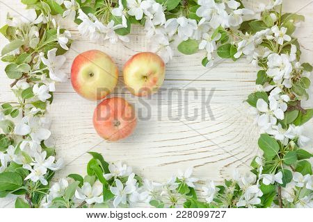 White Wooden Background. Ripe Apples And  Flowers Of Apple.