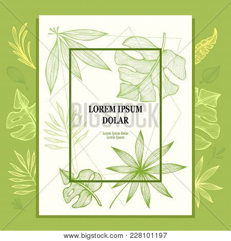Template From Hand Draw Structure Of  Tropic Leaves In Line Art For Creative Design Package Flyer Ba
