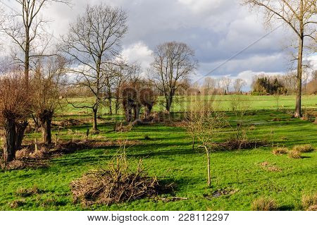 Tree-lined Landscape On A Sunny Winter Afternoon In The Country Side Of East-flanders, Belgium