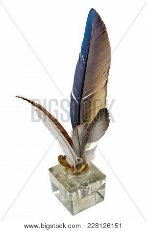 Feathers In The Inkpot, On A White Background, Isolated