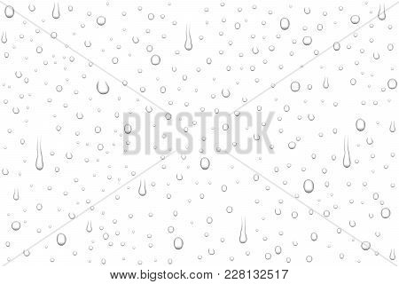 Vector Realistic Water Drops On Transparent Background. Rain Drops Without Shadows For Transparent S