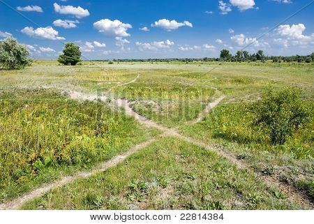 Paths In The Steppe