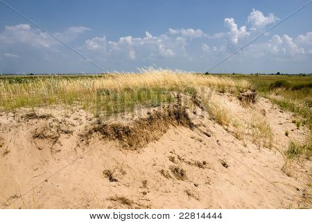 Sands In The Steppe