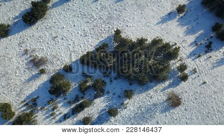 Aerial View Of Winter Forest Covered In Snow. Drone Photography - Panaramic Foto