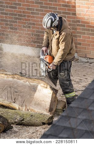Man Wearing Helmet Cutting A Tree Trunk With A Chain Saw