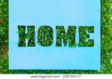 Creative Concept With Blue Paper Blank With Outline Lettering Home In Green Fresh Grass Sprouts With