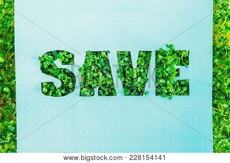 Creative Concept With Blue Turquoise Paper Blank With Outline Lettering Save In Green Fresh Grass Sp