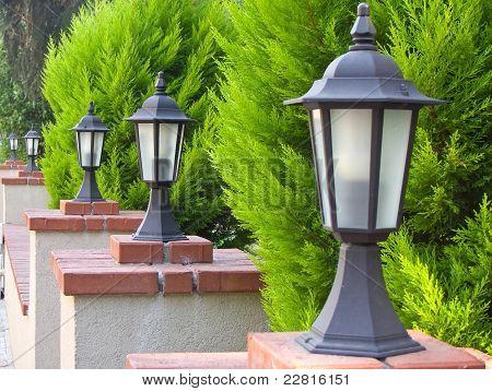 Lamps lineup