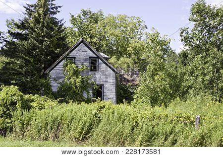 Wide View Of An Old Abandoned House, Surrounded By Trees And Foliage    Small River Shoreline With T