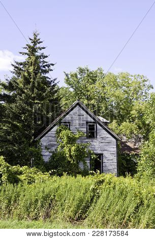 Vertical Of An Old Abandoned House, Surrounded By Trees And Foliage    Small River Shoreline With Tr
