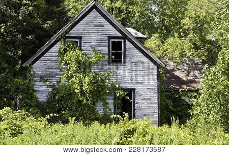 Wide View, Close Up Of An Old Abandoned House, Surrounded By Trees And Foliage    Small River Shorel