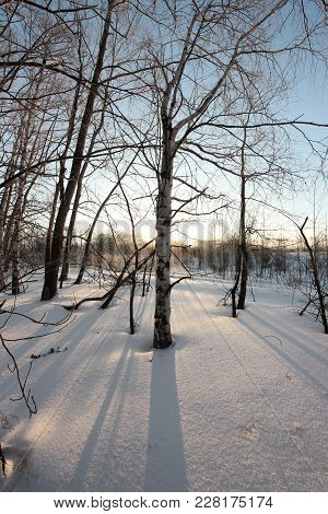 Winter Landscape With The First Rays Of The Sun