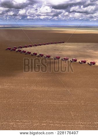 Mato Grosso, Brazil, March 02, 2008: Mass Soybean Harvesting At A Farm In Campo Verde