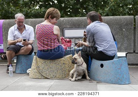 London, England - July 12, 2017 Happy Dog With A Bulldog Sitting In A Street Cafe, Drinking Beer