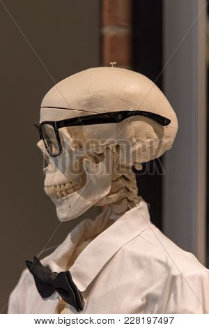 Dr Bones Wearing A Fly And Glasses
