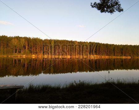 Foto Nature Forest And Lake On The Sunset