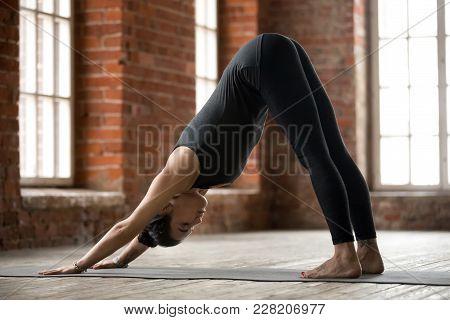 Young Sporty Woman Practicing Yoga, Doing Downward Facing Dog Exercise, Adho Mukha Svanasana Pose, W