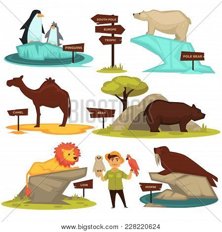 Zoo Animals Names And Direction Signs Vector Cartoon Infographic Guide Icons Set. Zoom Visitor Map A