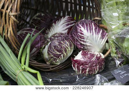 Radicchio Lettuce In Wicker Basket For Sale