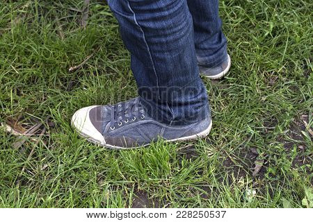 Sneakers On The Grass. Blue Sneakers Shoes Walking On Green Grass Side View.