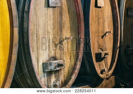 Barrels Of Wine In The Cellar