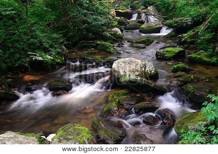 Upper York Creek
